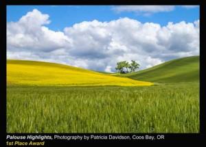 Davidson,-Patricia_Palouse-Highlights_Coos-Bay,-OR