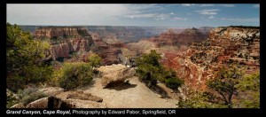 Pabor,-Edward_Grand-Canyon,-Cape-Royal_Springfield,-OR.