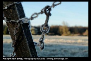 Twining,-David_Frosty-Chain-Strap_Brookings,-OR.
